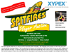Spitfires Player Auction